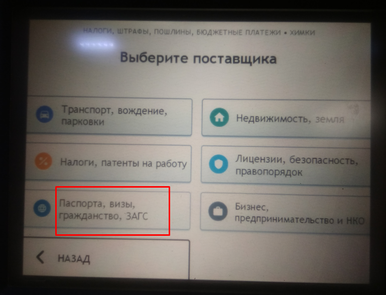 Паспорта ЗАГС