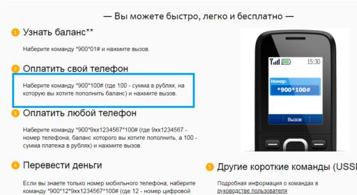 Оплата с помощью СМС